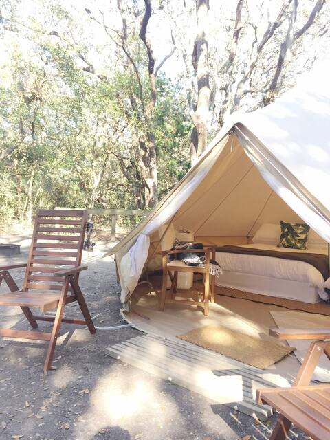 Glamping tent at topsail preserve state park in Florida