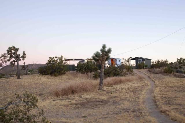 """""""No Regrets Coyote""""  Cabin in Joshua Tree"""
