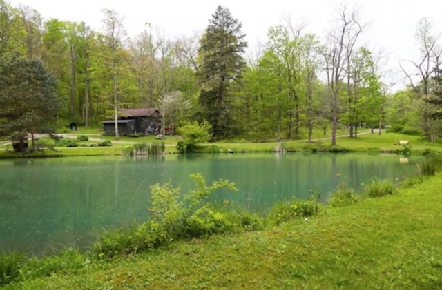 Lakeside cabin near Mohican State Park